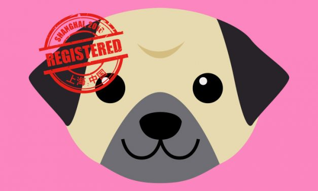 [How to]: Get a Dog License In China